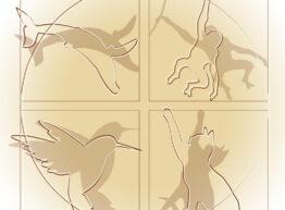 logo_animalethics_for_mail